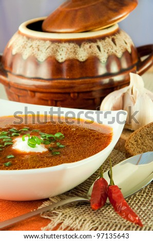 Borsch, soup from a beet and cabbage with tomato sauce. Ethnic cuisine