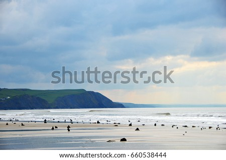 Borth Beach and Prehistoric forrest #660538444