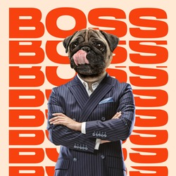 Boss headed by dog head standing with hands crossed. Copyspace to insert your text. Modern design. Contemporary art. Creative conceptual and colorful collage. Office worker lifestyle concept.