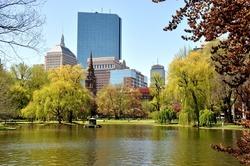 Boston city view - Public Garden