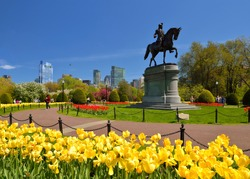 Boston Public Garden in the spring, scenic view. Washington Statue (1864), tulips and tree flowers blooming, city skyline in background.