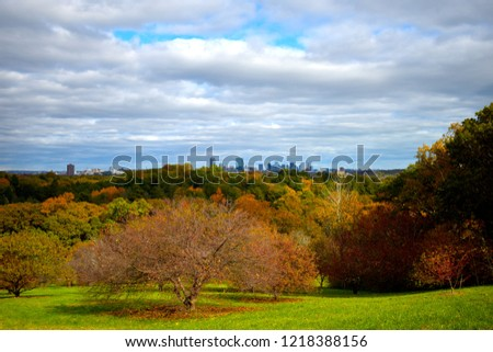 Boston Skyline from Peters Hill in the Arnold Arboretum
