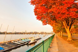 Boston Skyline in autumn showing  the Charles River at sunrise, Boston Massachusetts.