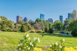 Boston USA Public Garden, Common Frog Pond and city skyline.