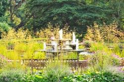 botanic garden in Cambridge and their flowers