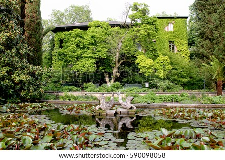 Marvellous Shutterstock Mobile Royaltyfree Subscription Stock Photography  With Gorgeous Botanical Garden  Palmengarten Frankfurt Am Main Germany  Park Building  House Overgrown With With Cute Garden Centre Walsall Also Rhs Encyclopedia Of Gardening In Addition Ranelagh Gardens And Canton Garden As Well As Waterproof Cushions For Garden Furniture Additionally Garden Centres Near Swindon From Mshutterstockcom With   Gorgeous Shutterstock Mobile Royaltyfree Subscription Stock Photography  With Cute Botanical Garden  Palmengarten Frankfurt Am Main Germany  Park Building  House Overgrown With And Marvellous Garden Centre Walsall Also Rhs Encyclopedia Of Gardening In Addition Ranelagh Gardens From Mshutterstockcom
