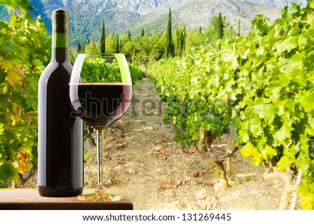 Bottle and glass of red wine on vineyard background