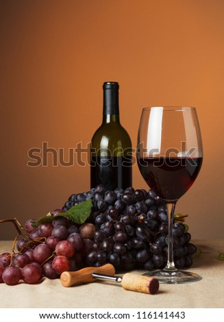 Bottle and glass of red wine - studio shot