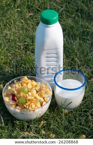 Bottle, glass with milk and a bowl of dietary food