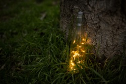 Bottle glittering with lights on tree bark and resting on grass. Concept of magic and illusion.