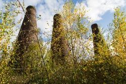 Bottle kilns and trees in Autumn, Stoke on Trent, England