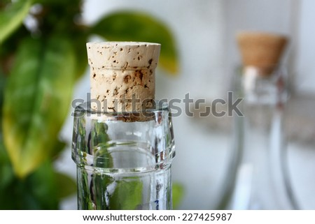 bottle neck with cork