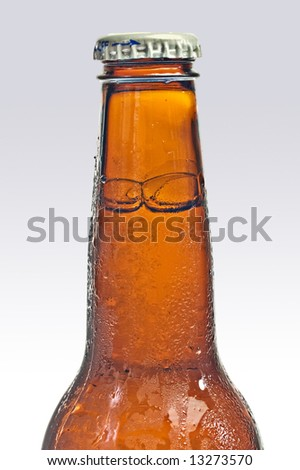 Bottle of beer resting on a bed of ice