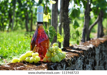 Bottle of champagne and grapes against vineyards