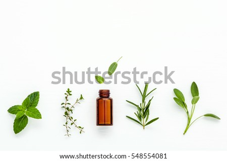 Bottle of essential oil with  fresh herbal sage, rosemary, lemon thyme and peppermint setup with flat lay on white wooden table.