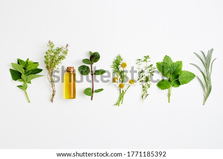 Bottle of essential oil with herbs arranged on white background.Alternative medicine concept. Foto stock ©