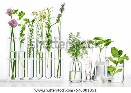 Bottle of essential oil with herbs on white background #678881851