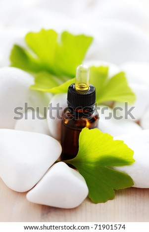 bottle of ginko essential oil with fresh leaves - beauty treatment