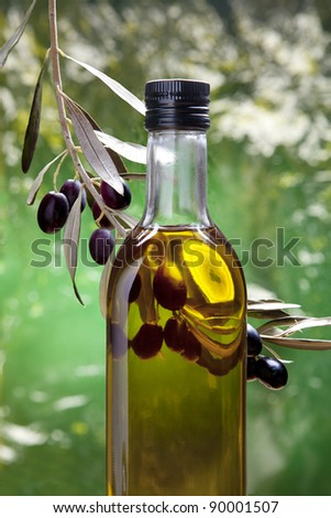 Bottle of olive oil in the olive grove