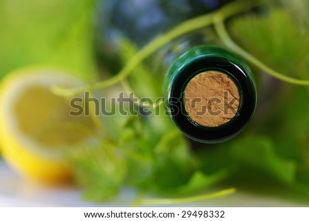 Bottle of red wine and grapevines.