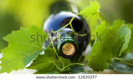 Bottle of red wine and green leaves.