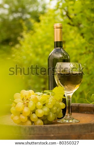 Bottle of white wine with wineglass and grapes in vineyard
