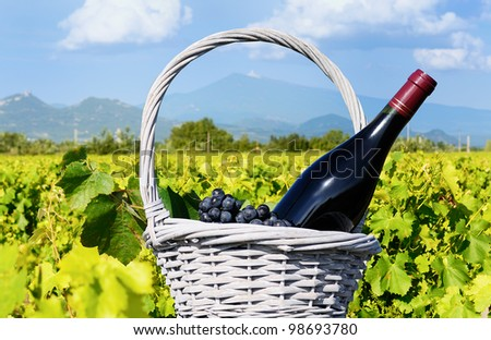 bottle of wine and grappes in basket in France