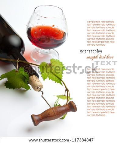 bottle of wine from the vine