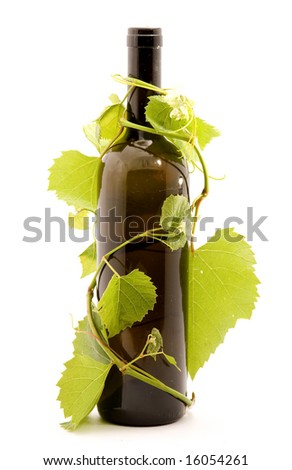 bottle of wine studio isolated - stock photo