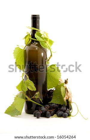 bottle of wine studio isolated