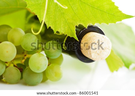 bottle of wine with leaves and grapes isolated