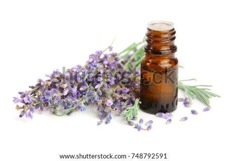Bottle with aroma oil and lavender flowers isolated on white background
