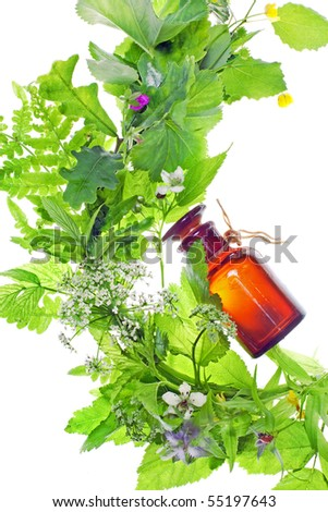 bottle with homeopathy balm and wood plants