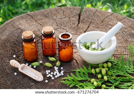 Bottles of homeopathic globules. Thuja occidentalis drugs and mortar. Homeopathy medicine concept.