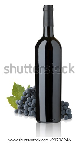 bottles of red wine for label design