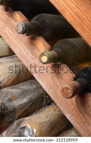 Bottles of vintage wine on shelves in a wine cellar