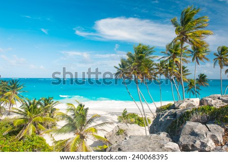 Bottom Bay is one of the most beautiful beaches on the Caribbean island of Barbados. It is a tropical paradise with palms hanging over turquoise sea Foto stock ©