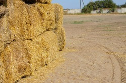 Bottom of a stack of Rectangular dry hay bales. Storage of dry herbs for feeding cows and other animals. Yellow straw in rectangular bales.