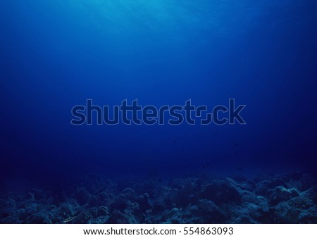 Bottom of the sea background.  #554863093