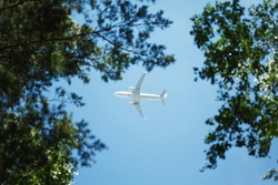 Bottom view on jet airplane flying in the sky overhead among green trees, carbon footprint