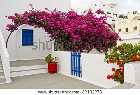 Bougainvillea and traditional architectural details of Santorini, Greece.
