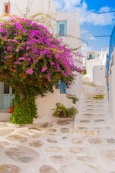 Bougainvillea flowers around the house with a balcony and stairs.Mikonos.