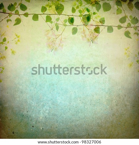 Bougainvilleas's treetop on grunge background