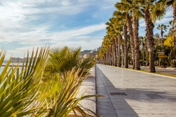 Boulevard along the sea with palmtrees and a blue sky with clouds in Málaga, Spain,