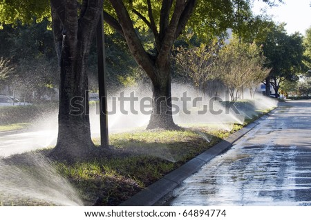 Boulevard with irrigation activated and overspraying the street