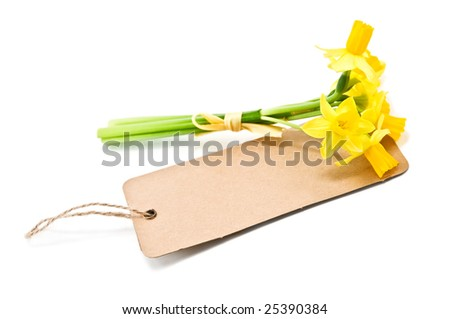 bouquet and paper card isolated