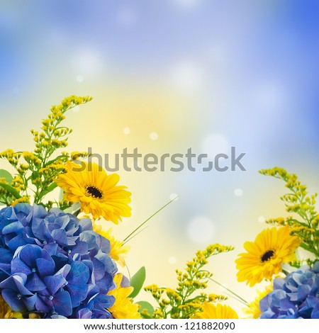 Bouquet from blue hydrangeas and yellow asters, a flower background