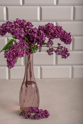Bouquet made of blooming lilac branch standing in transparent glass vase at home against white tiled wall