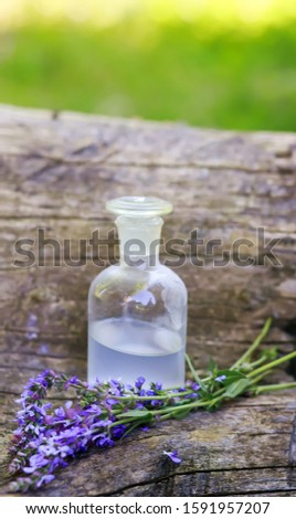 bouquet meadow clary or meadow sage purple flowers near bottle of medicine on stump in forest on background of green grass. Collection of herbs in season. Medicines from medicinal pl