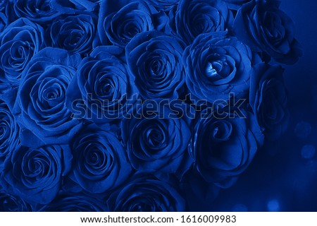 Bouquet Of Beautiful Blue Roses. Trend color classic blue. Color of 2020. Main trend of the year. Valentine's Day. Selective Focus, Blue Creative Tinting